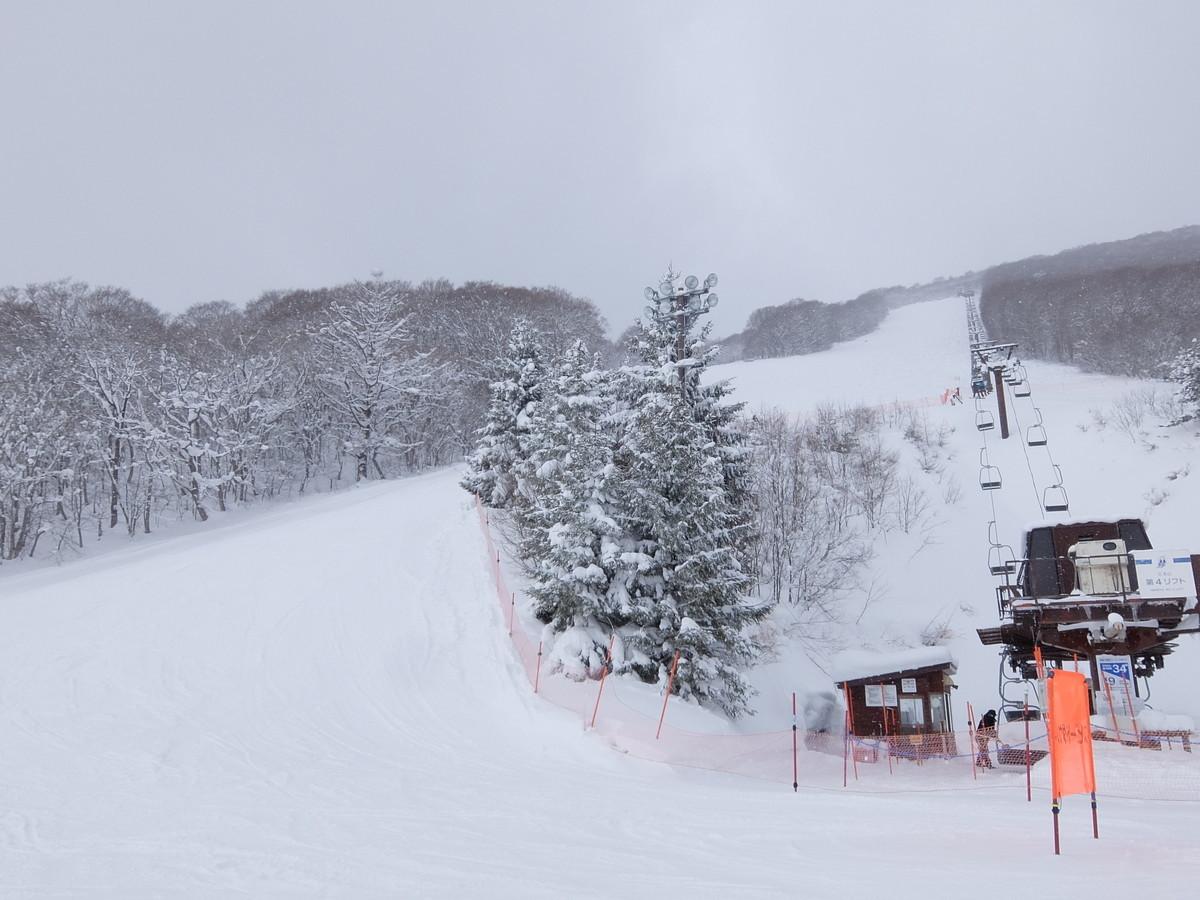 f:id:chiba-snow:20210113235441j:plain