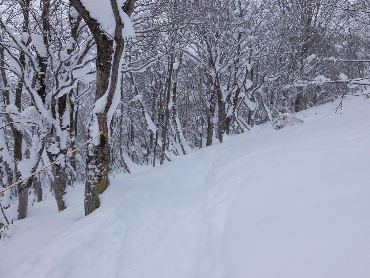 f:id:chiba-snow:20210116221918j:plain