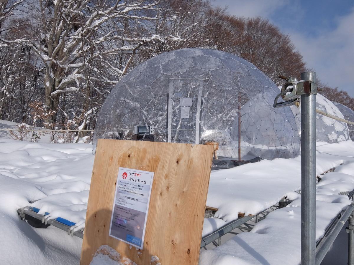f:id:chiba-snow:20210117003640j:plain