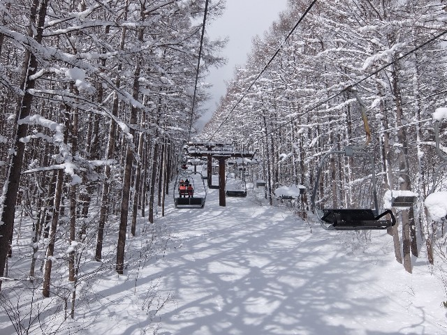 f:id:chiba-snow:20210127230612j:image