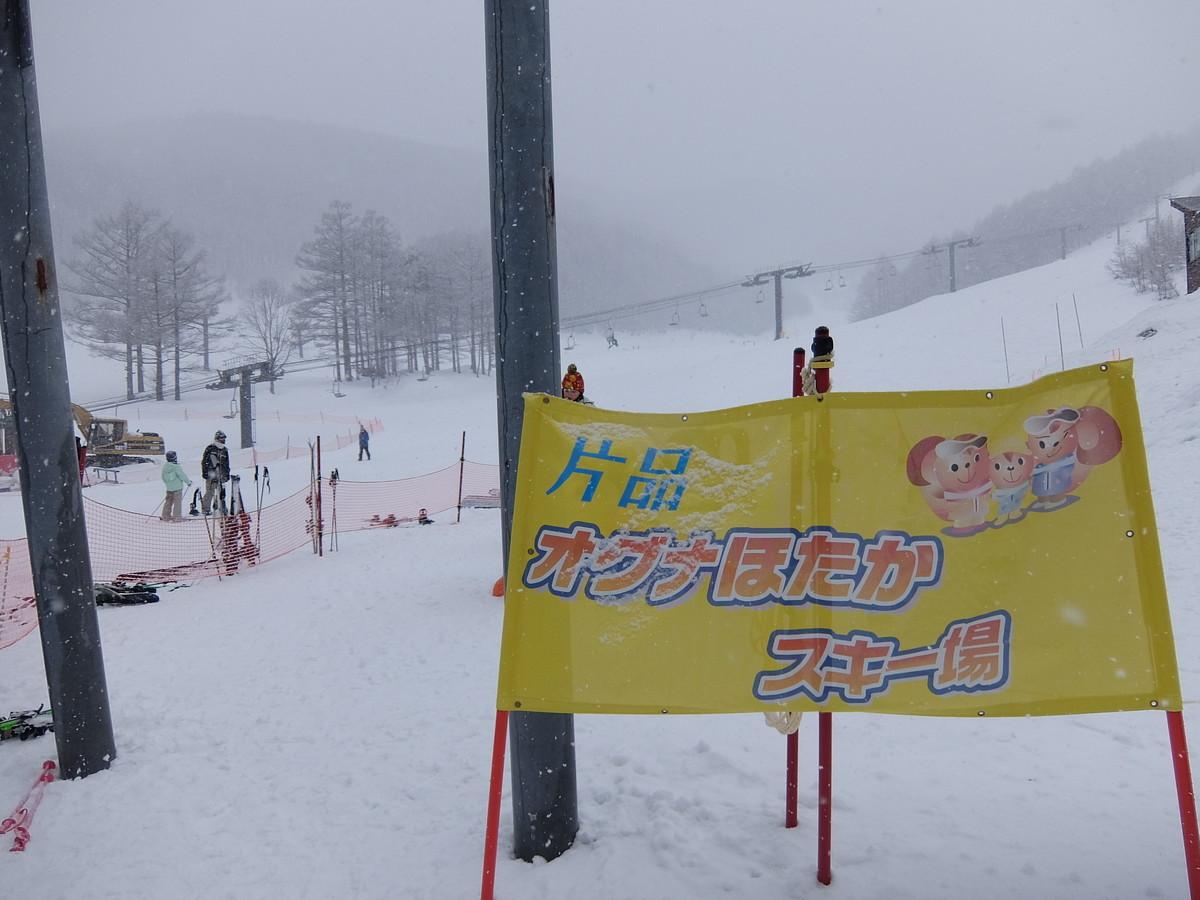 f:id:chiba-snow:20210131221404j:plain