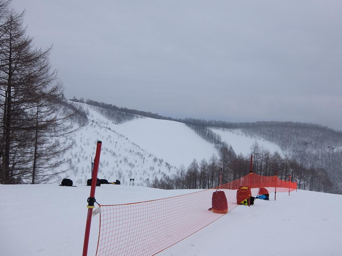 f:id:chiba-snow:20210131223222j:plain