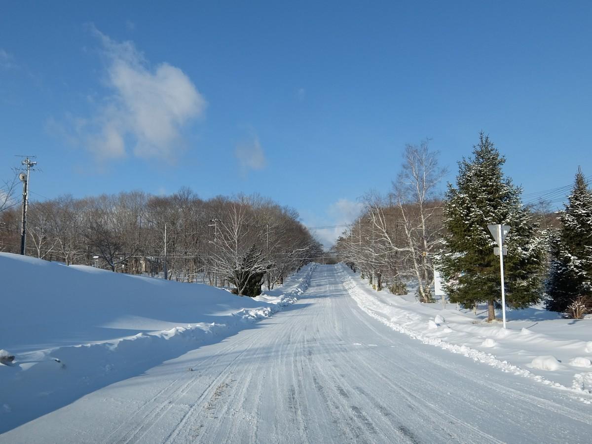 f:id:chiba-snow:20210211203350j:plain