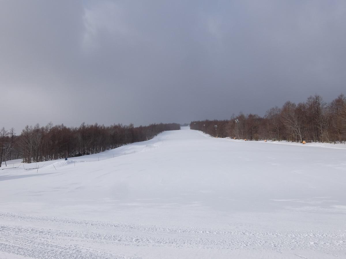 f:id:chiba-snow:20210211225024j:plain
