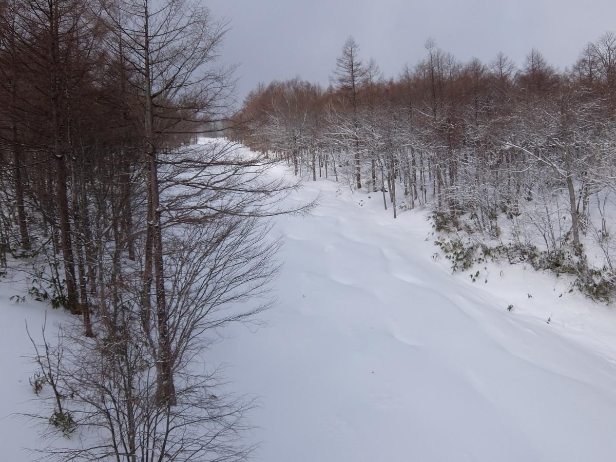 f:id:chiba-snow:20210212223019j:plain