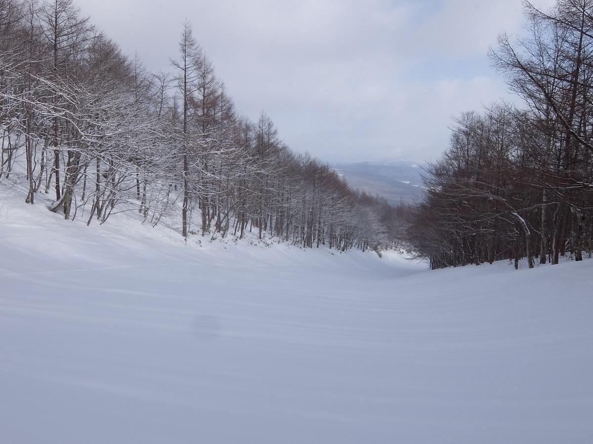 f:id:chiba-snow:20210212224219j:plain