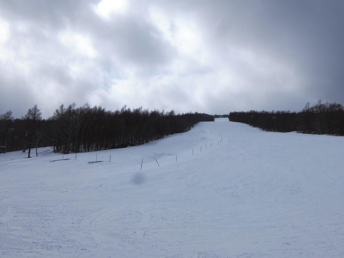 f:id:chiba-snow:20210213005502j:plain