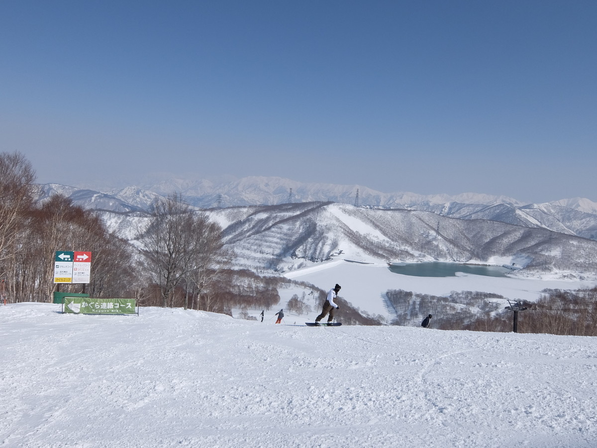 f:id:chiba-snow:20210223002218j:plain