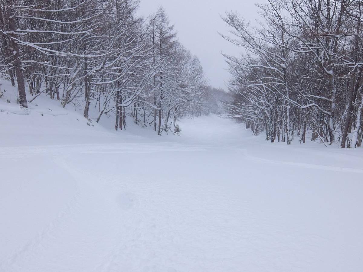 f:id:chiba-snow:20210306001920j:plain