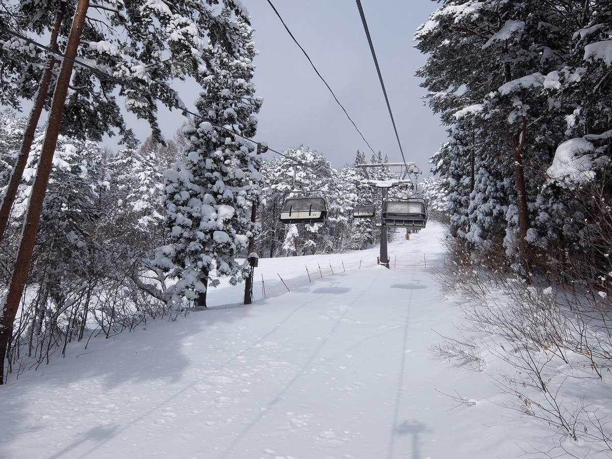f:id:chiba-snow:20210307005300j:plain