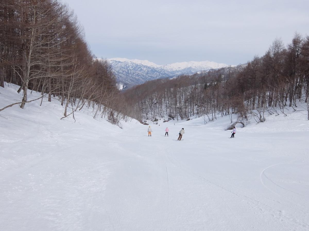 f:id:chiba-snow:20210331214428j:plain