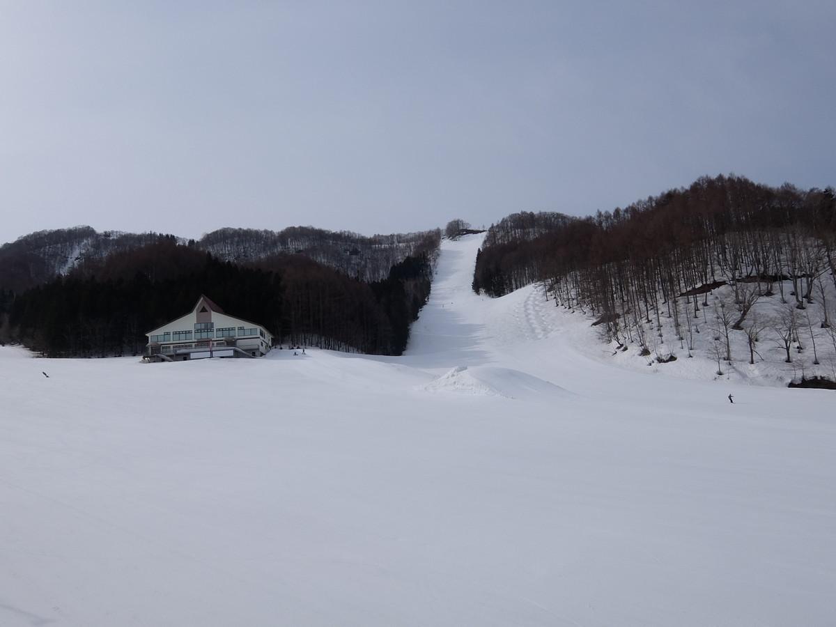 f:id:chiba-snow:20210331230222j:plain