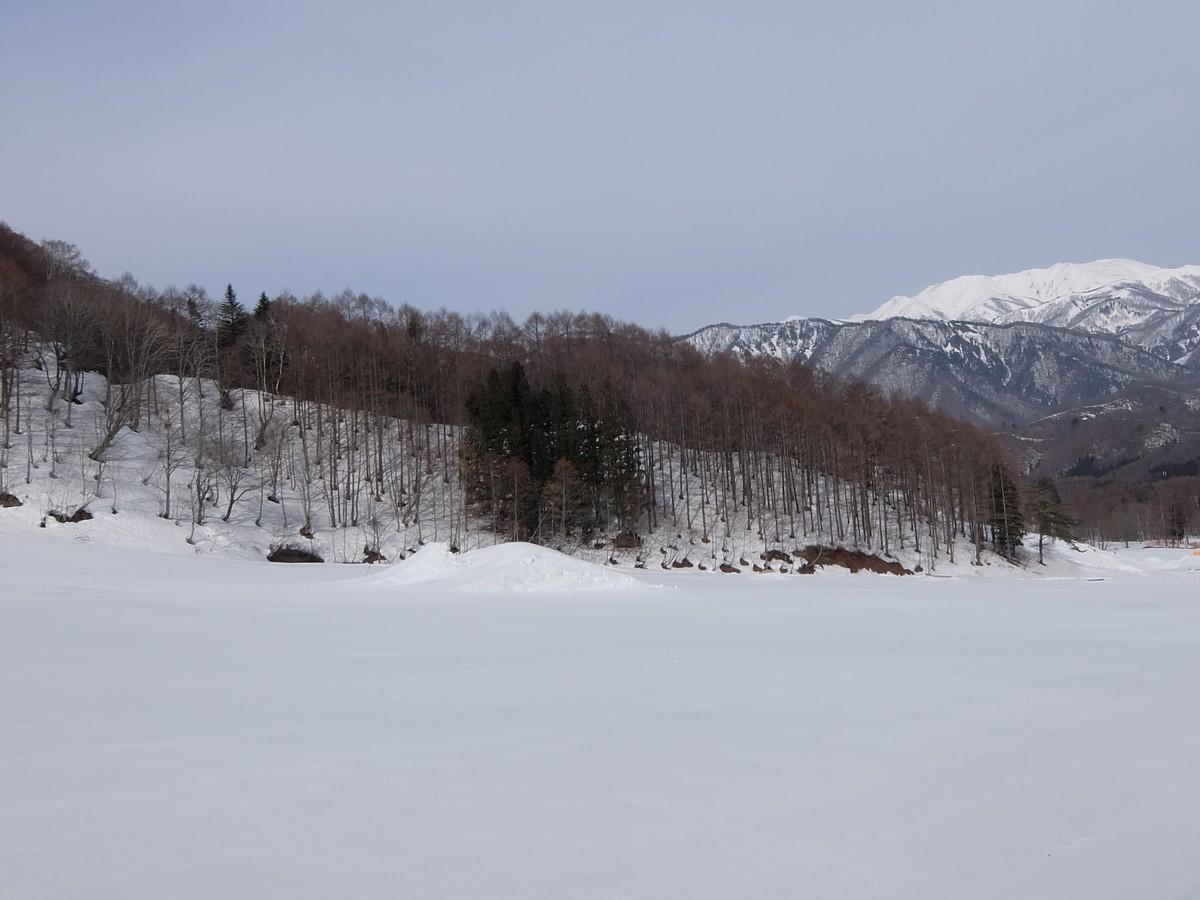 f:id:chiba-snow:20210331235546j:plain