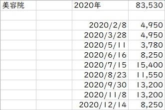 f:id:chiba373:20201230082906j:plain