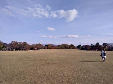 f:id:chibachiwa:20181125141758j:plain
