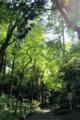 成田山公園02