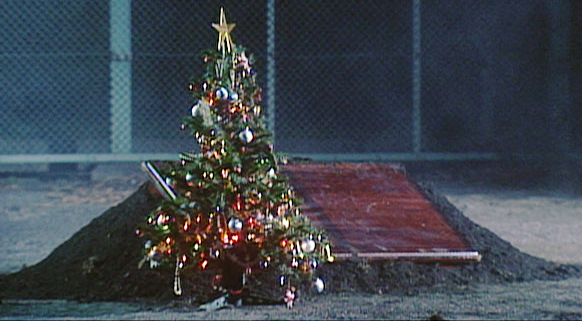 クリスマスツリー,KinKiKids,illumination,イルミネーション,イルミネーションデザイナー,design,designer