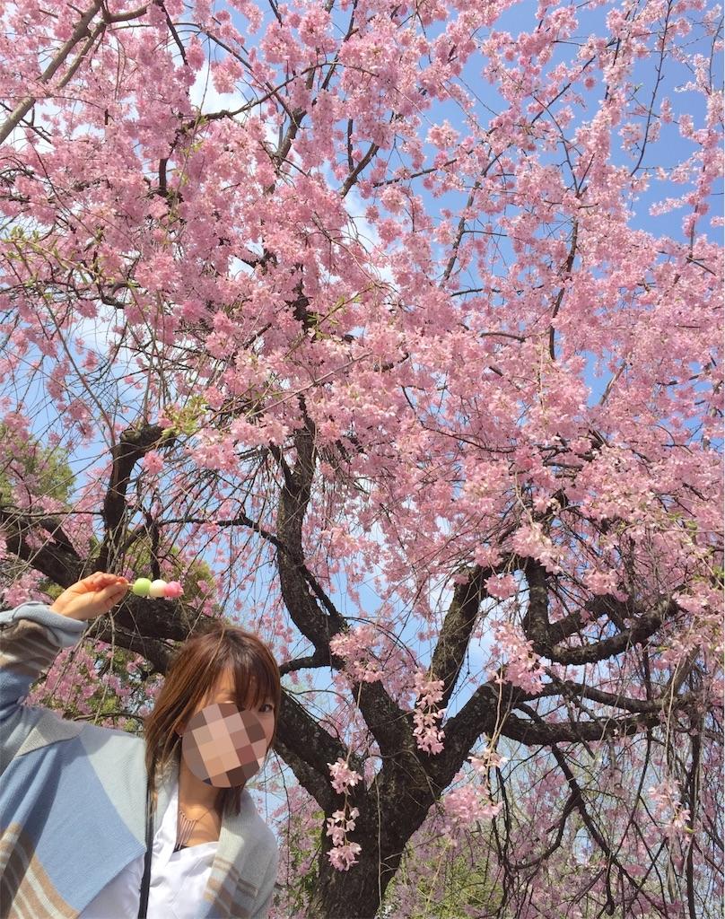 f:id:chibi_cafe_yu:20170419204729j:image