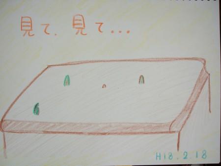f:id:chibikkoma-ya:20060218172545j:image