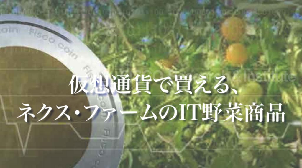 fisco-フィスコ-野菜宅配サービス