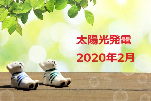 f:id:chibinako:20200307045929j:plain