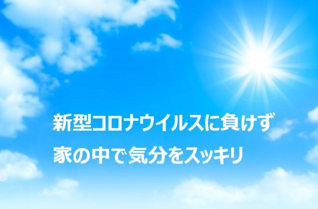 f:id:chibinako:20200321084740j:plain