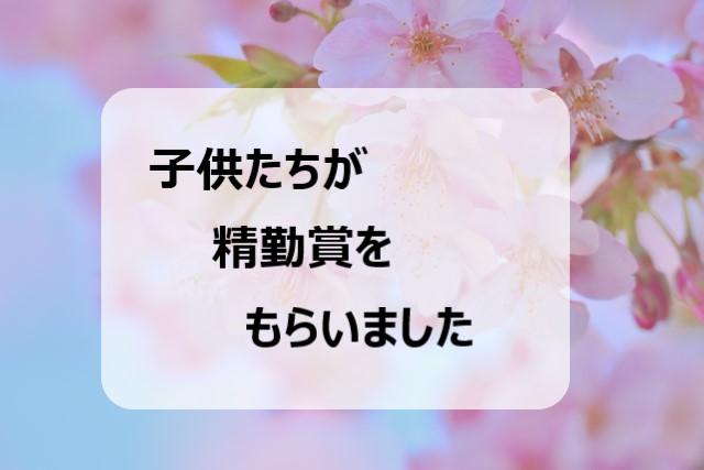 f:id:chibinako:20200324215115j:plain