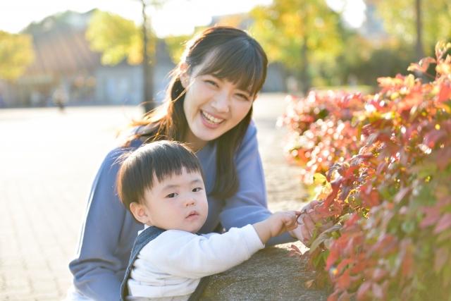 f:id:chibinako:20210321073627j:plain