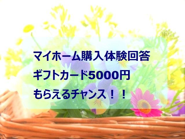 f:id:chibinako:20210417095920j:plain