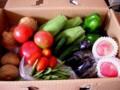 野菜など(2009/06/27)