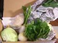 野菜など(2010/01/05)