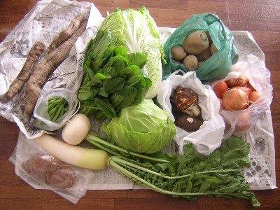 野菜いろいろ(2010/11/13)