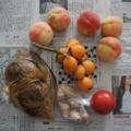 [食]果物・トマト・漬物・ワケギ球根(2012/07/05)