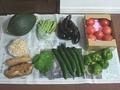 [食]野菜・漬物など(2019/07/07)