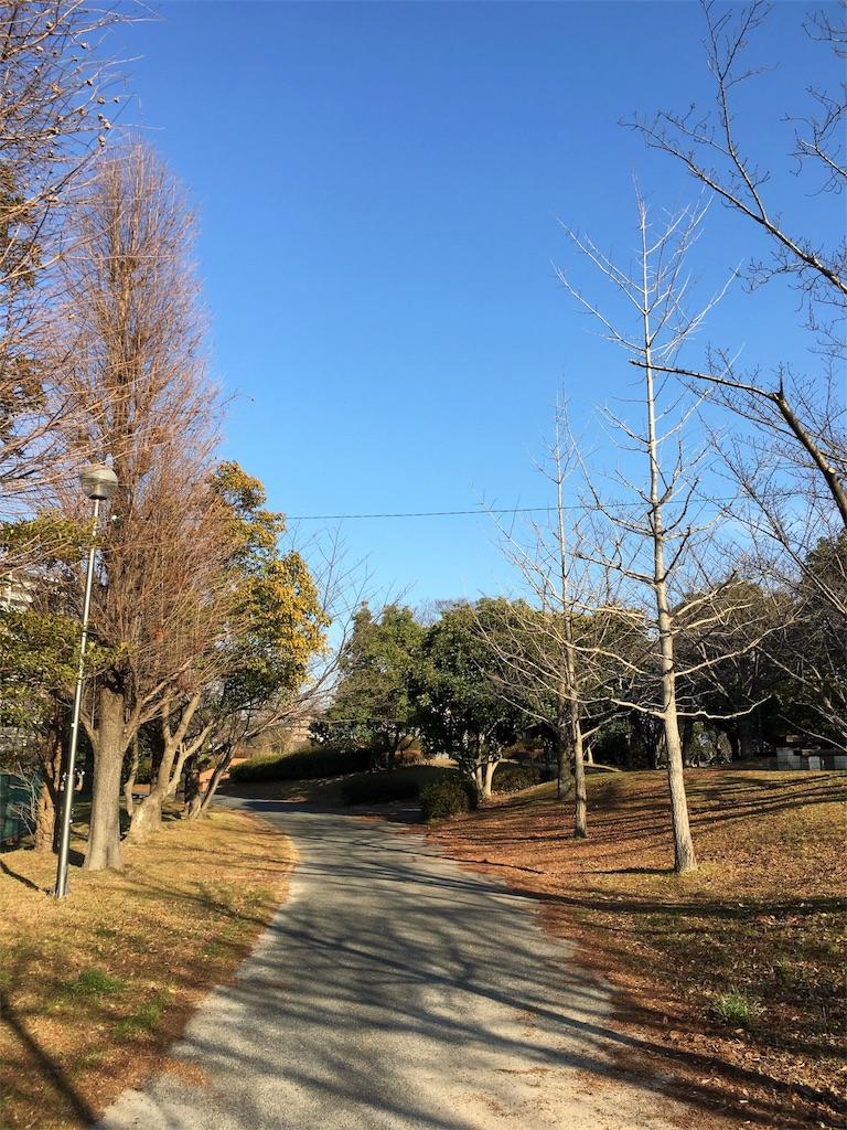 f:id:chibo-kyu:20170128104412j:image