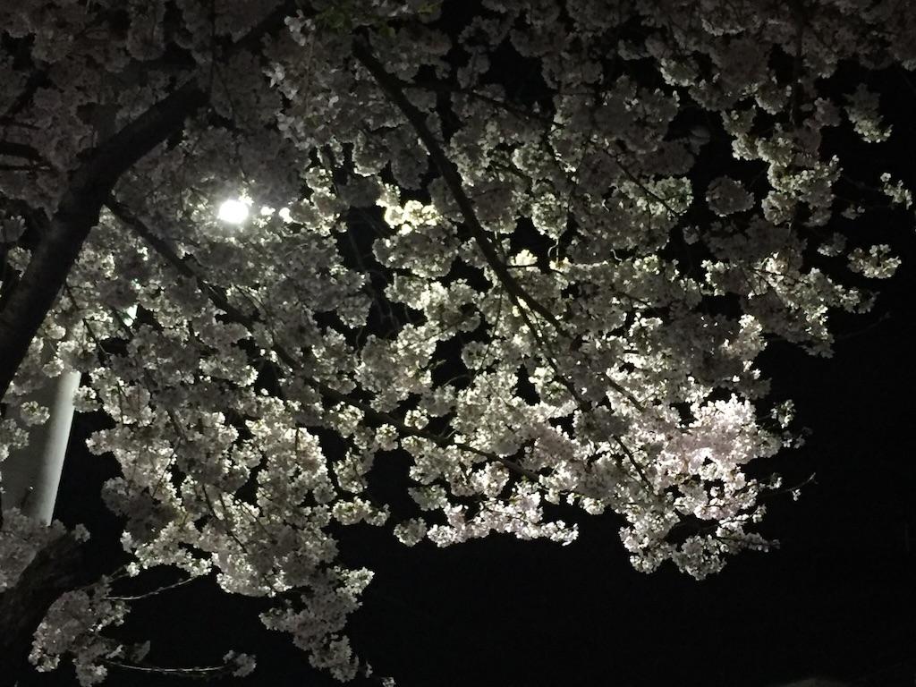 f:id:chicamachi:20170410094226j:image