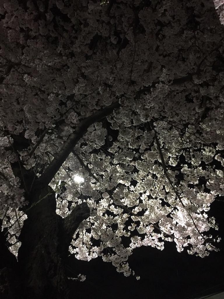 f:id:chicamachi:20170410094236j:image
