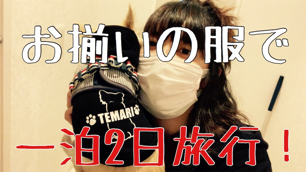 f:id:chichan729-h:20191227221101j:image