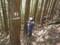 人工林試験地ペンキ塗り
