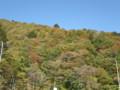 ワサビ沢の紅葉