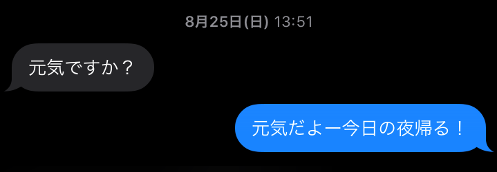 f:id:chichichan:20200403121101p:plain