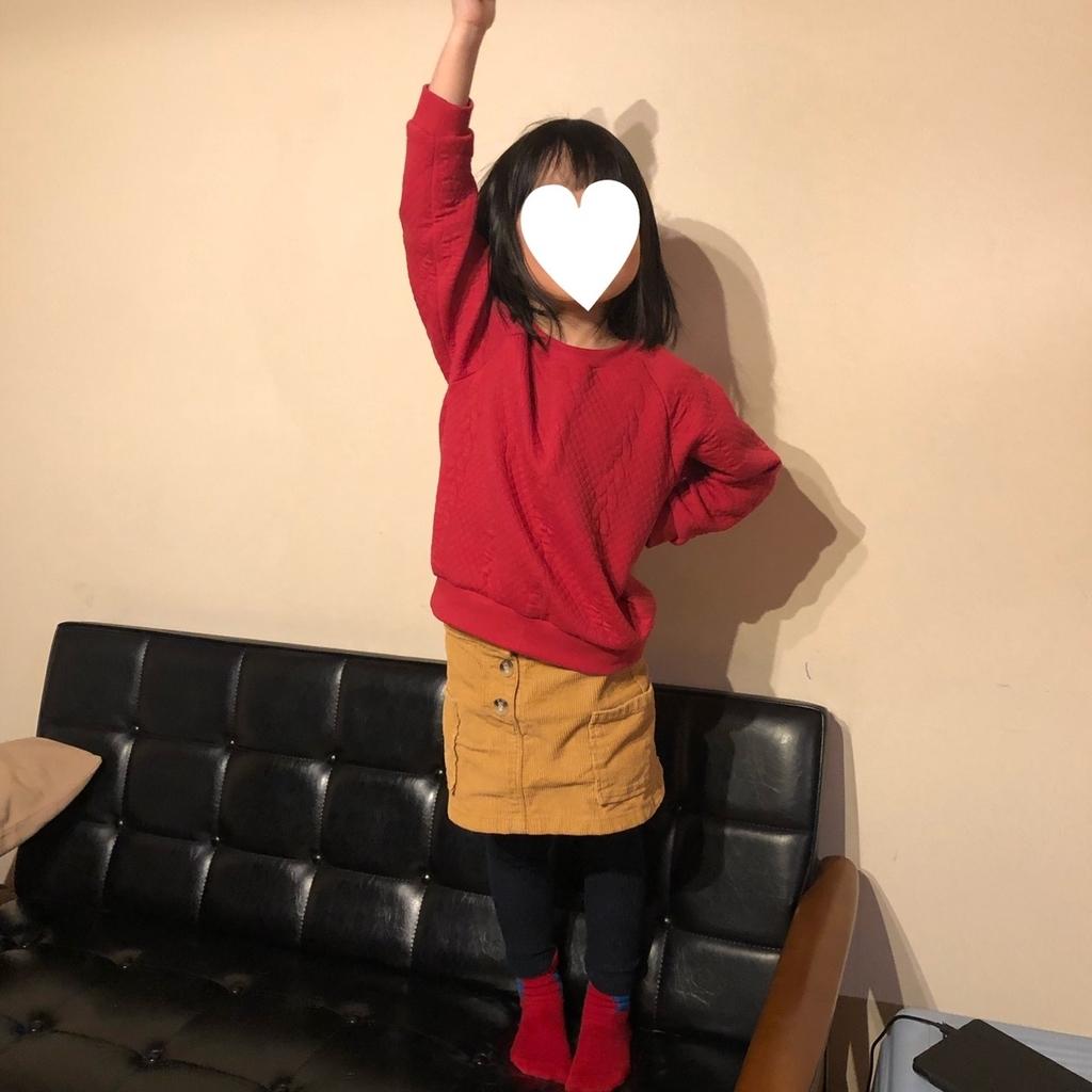 f:id:chichihatsuchi:20190129093127j:plain