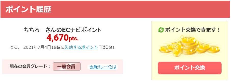 ポイ活 月10万円 副業