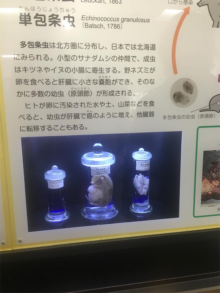 f:id:chidorimemo:20170220014128j:image