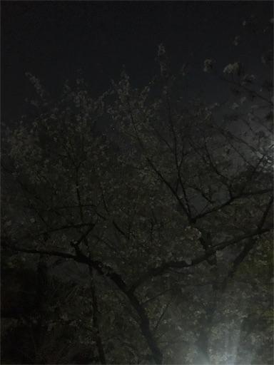 f:id:chidorimemo:20180401182732j:image