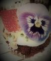 本物しふぉんさんが作ったおいしそうなケーキだよ