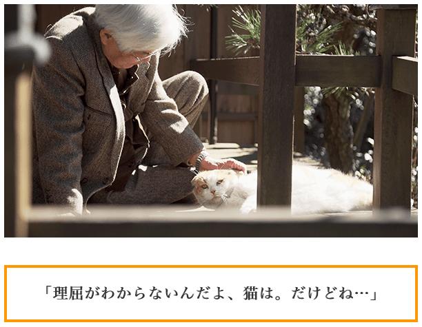 f:id:chigau-mikata:20180306103320p:plain