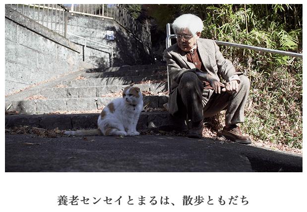 f:id:chigau-mikata:20180306103440p:plain