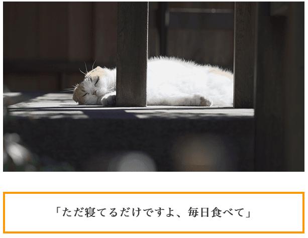 f:id:chigau-mikata:20180306103528p:plain