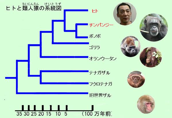 f:id:chigau-mikata:20181121111448j:plain